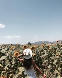 Woman walking through a field of sunflowers holding her hat.